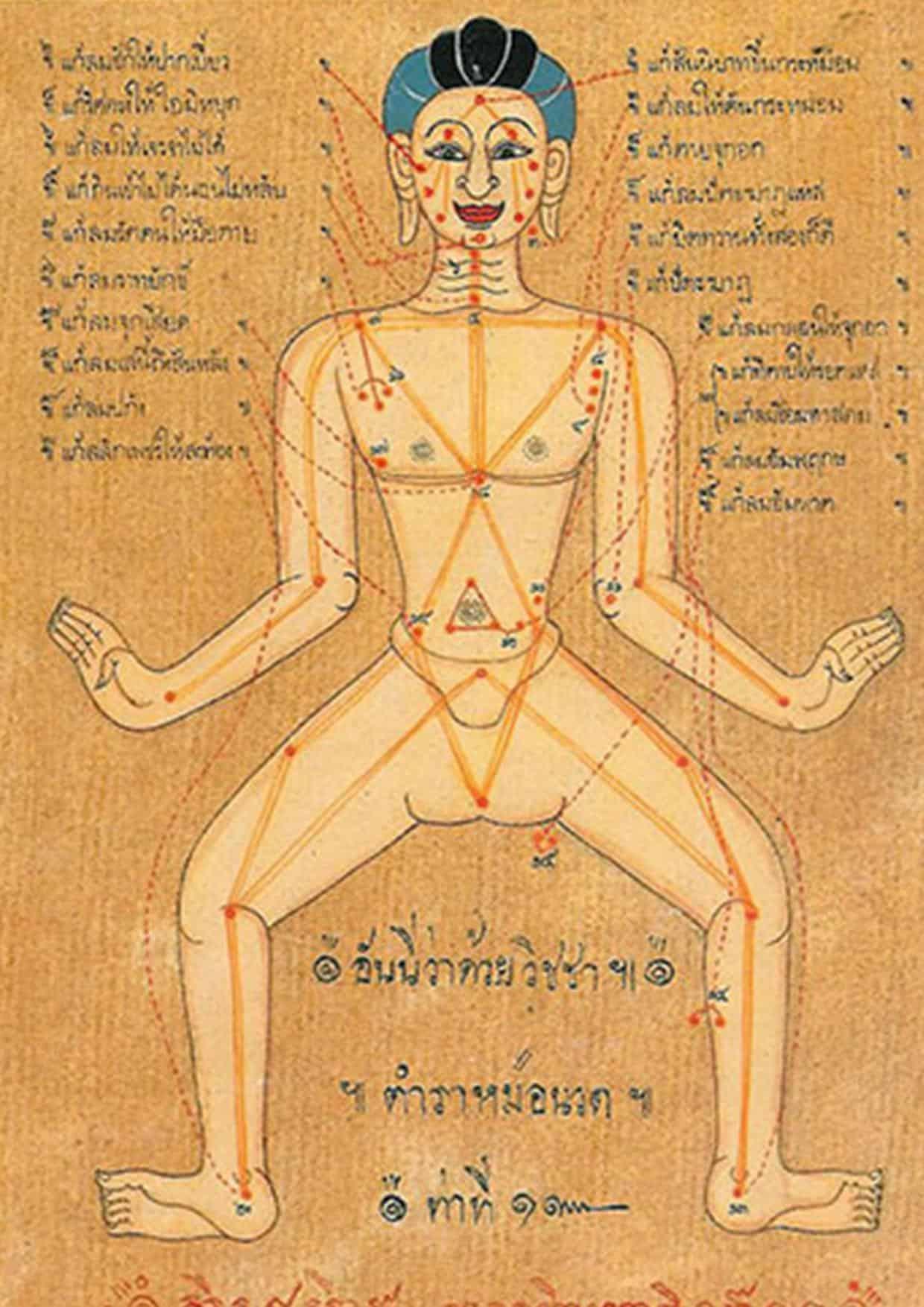 mappa dei sen per il massaggio tok sen